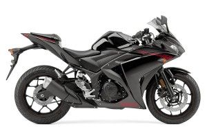 Bike: 2015 Yamaha YZF-R3
